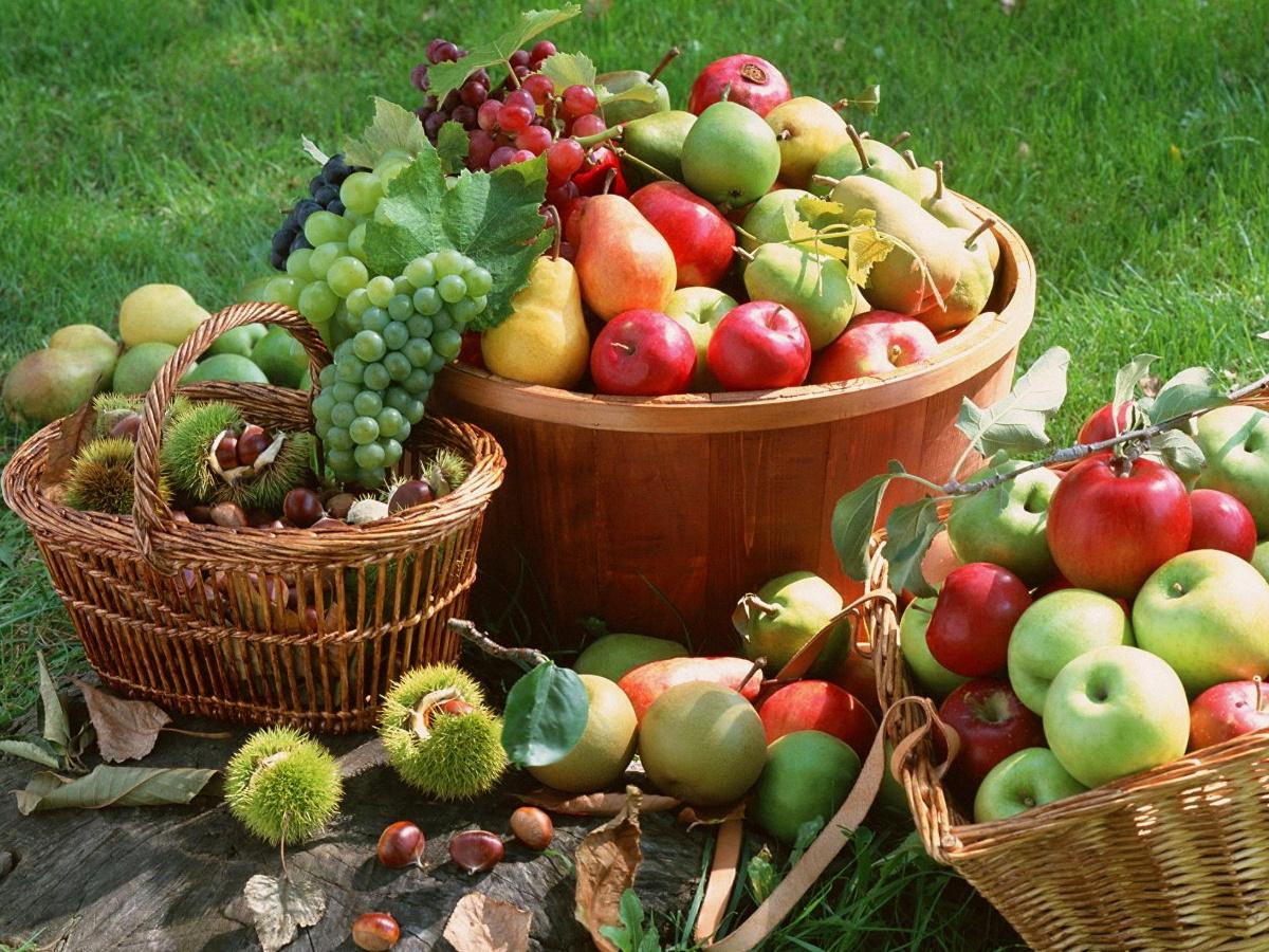 Налоги с продажи урожая